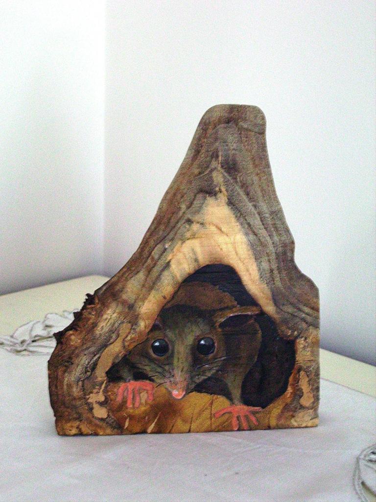 Cheeky Possum