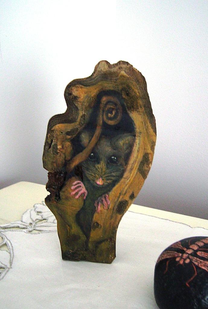 Pygmuy Possum